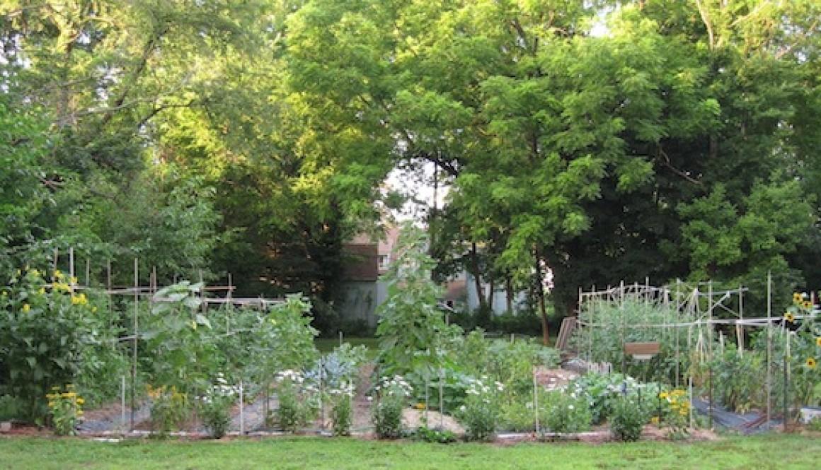 The vegetable garden!  I