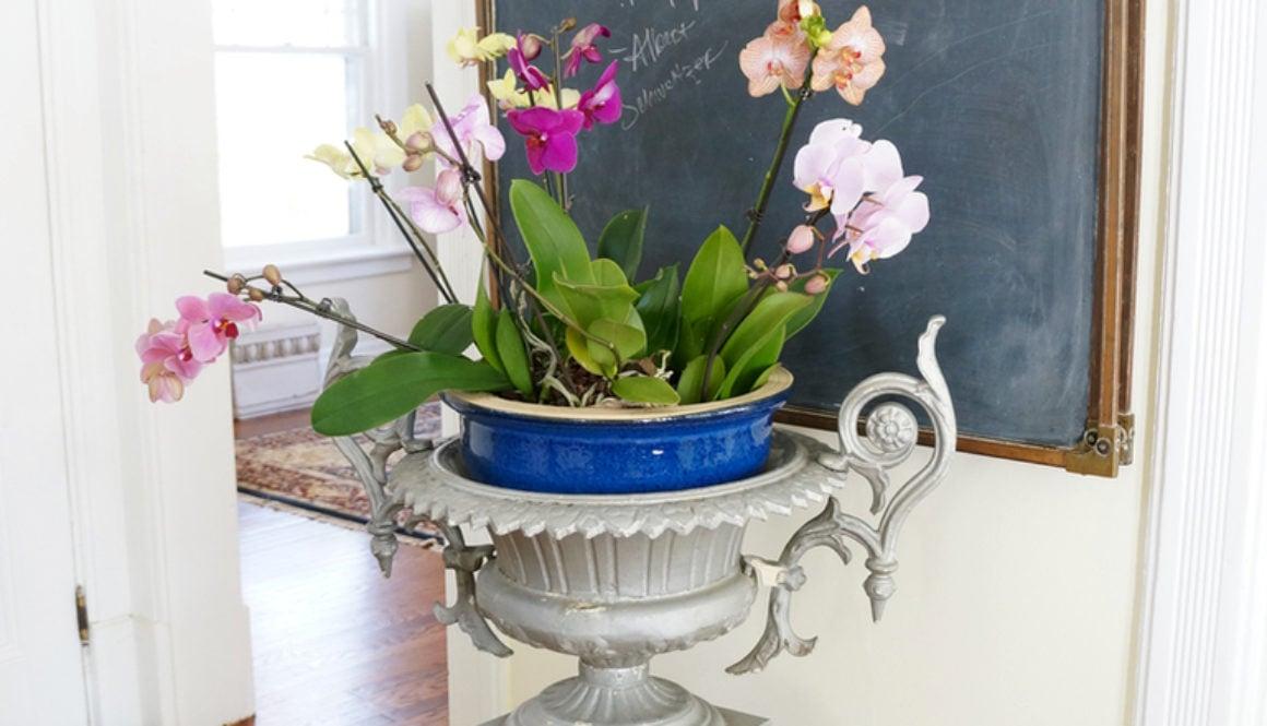 antique garden urn 11